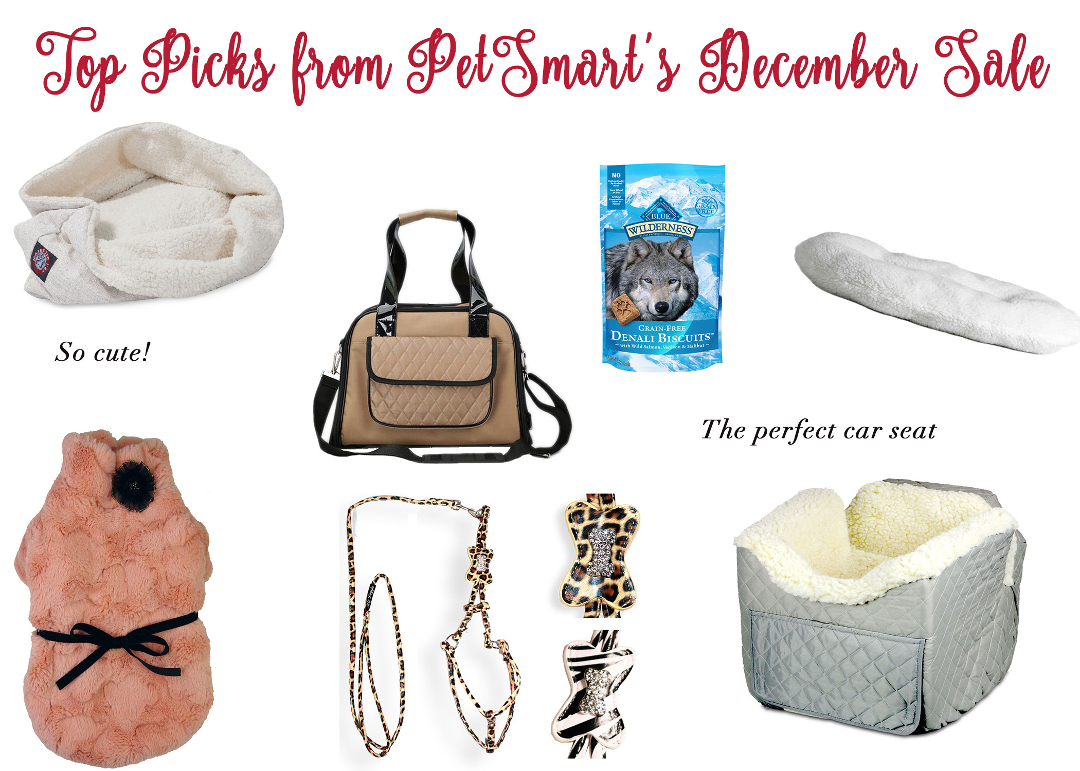 Top Picks from PetSmart\'s December Sale - Blonde Boss Babe